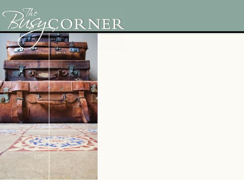 Organizing Busy Corner Tammy Atchison Downsize Relocate Interior Redesign Design Napo